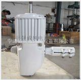 廠家直銷1000瓦風力發電機價格優惠