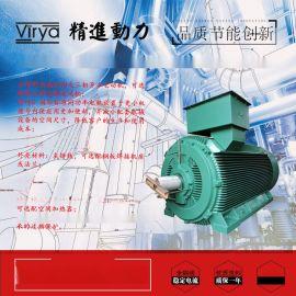 Y2X系列低壓大功率電動機精進動力Virya品牌