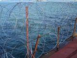 船舶防海盗刺  船舶防海盗网