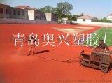山东新国标  塑胶跑道施工,工程公司