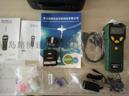 挥发性有机化合物检测仪器 VOC浓度测量仪PGM-7300