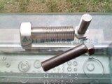 不鏽鋼外六角大螺栓,304不鏽鋼外六角大螺栓,不鏽鋼外六角大螺栓廠家