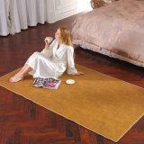 厂家直销  电热地毯垫 保健发热地毯 电暖垫 发热垫