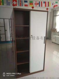 武汉推拉门置物柜  储物柜