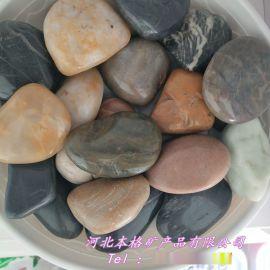 供应雨花石 绿化铺路 鱼缸用黑色雨花石 混色雨花石