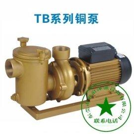 游泳池 (TB系列)比美系列铜泵高性能  大气的泳池设备