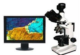广西数码偏光显微镜ME51