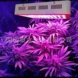 植物燈外殼 300w led植物燈,Mini 300w植物燈,全光譜,溫室大棚