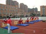 學校達標體操墊子,仰臥起坐墊子,練功墊子