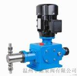 DZ-X型柱塞式計量泵