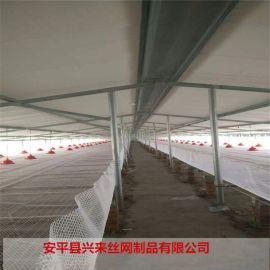 西安塑料網 養殖塑料網片 網養育雛設備