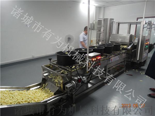 薯条全自动油炸设备,薯条油炸流水线