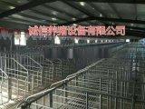 質量優質母豬限位欄價格低單體母豬定位欄養豬設備新型保胎欄