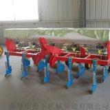 商丘精撥機大型多功能玉米播種機型號