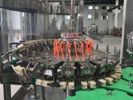 厂家直销饮料矿泉水饮用水自动流水线灌装机