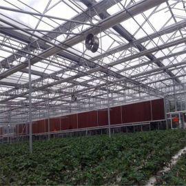 智能温室大棚 连栋温室 玻璃温室定制 厂家直销