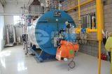天津畜牧养殖场用4吨沼气锅炉
