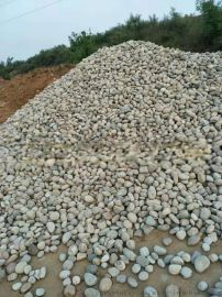 德州水处理鹅卵石滤料/杂色鹅卵石