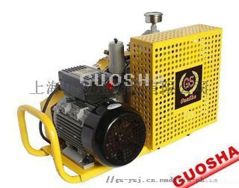 消防空气充填泵上海国厦公司厂家