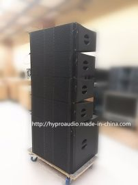 DAISE DS210 专业线阵 专业音箱