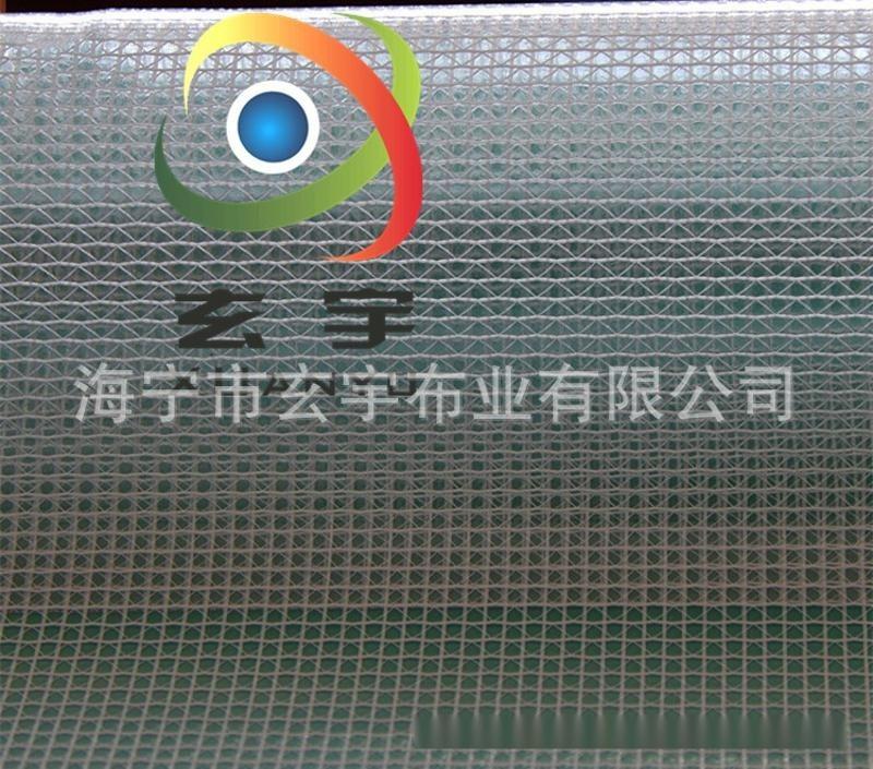 現貨供應0.3mm PVC透明網格布