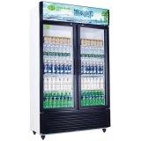 深圳冰柜价格_深圳饮料冰柜_深圳冷冻冰柜|冷柜厂家