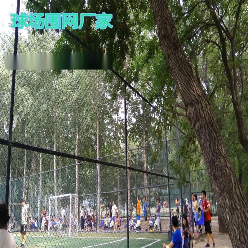 运动场围网厂家、足球场地围网、护栏