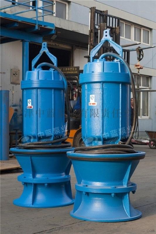 水泵厂轴流泵潜水泵