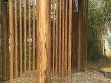 河南木纹漆 金属木纹漆 水性木纹漆