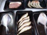 小康牌连续贴体包装机,厂家直销海鲜鱼类贴体包装机