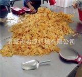 自动搅拌薯片油炸机 小型薯片/薯条油炸成套设备