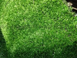 西安哪裏有賣人造草坪137,72120237