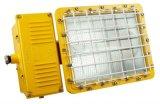BTC6150防爆泛光燈 一體式防爆泛光燈