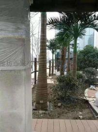 仿真椰子树效果好质量优美观自然哪家服务好