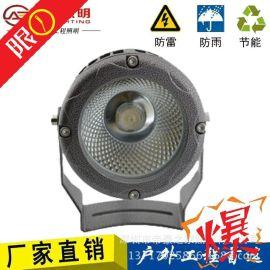 AE照明燈投射燈廣告燈室外景觀燈戶外防水燈草坪燈 戶外亮化
