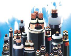 电力电缆(VV VV22 YJV YJV22 ZR-VV ZR-YJV ZR-VV22 ZR-YJV22 NH-VV NH-YJY WDZ-YJY WDZN)