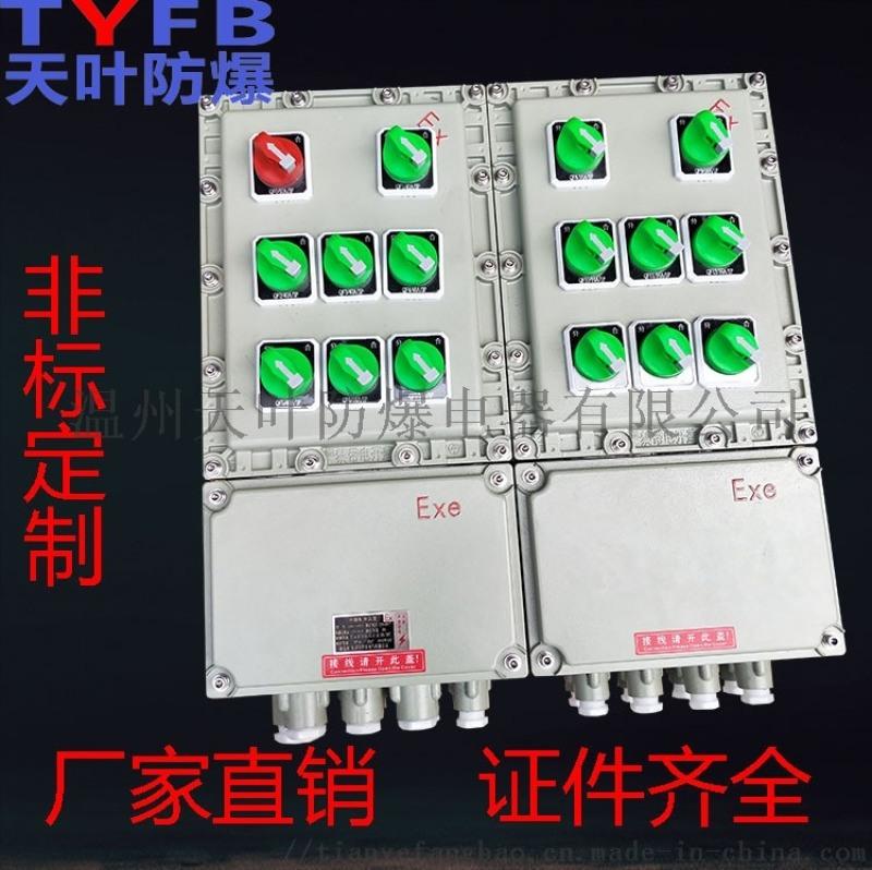 厂家直销国标BXMD防爆配电箱20A漏电保护