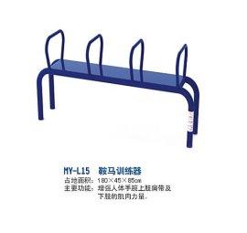 广西名扬健身器材鞍马训练器那坡体育局安装。