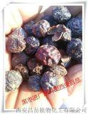 黑枣提取物厂家 生产30%多糖