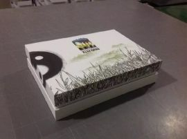 佛山特种纸盒制作、彩盒制作设计