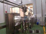杯裝凝固型酸奶生產線廠家(鄭州/科信)發酵奶生產設備 酸奶加工機器