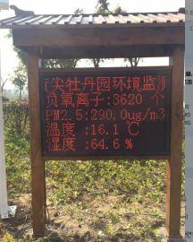 林业负氧离子检测系统 度假村环境监测仪 厂家销售