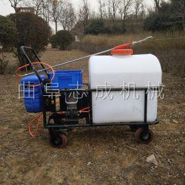 供应电动打药车手推式四轮打药机105L电动喷雾器