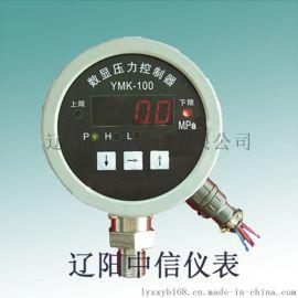 辽阳中信仪表YPTF-100压力表