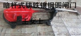 上海闵行排污300mm600mm暗杆镶铜铸铁圆闸门