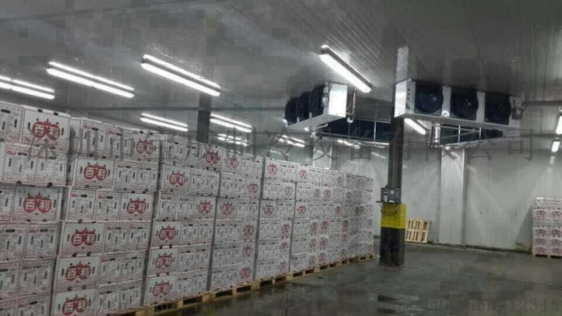 深圳福田冷库工程,冷库维修,低温冷库