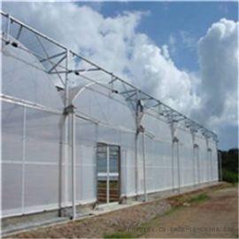 连栋薄膜温室 智能连栋温室 蔬菜花卉温室大棚