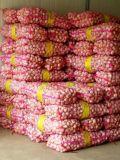 装玉米编织袋网袋水果蔬菜网眼袋网状大号网袋
