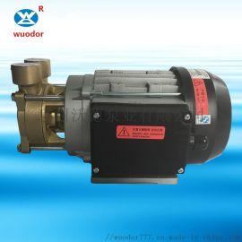 蒸汽发生器高温热水泵WF轴向吸入式高温循环旋涡泵