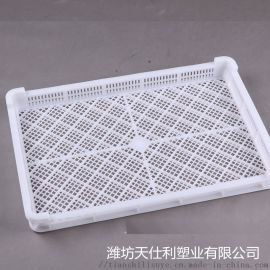 天仕利塑料单冻盘 冷库塑料网盘 冷库单冻器
